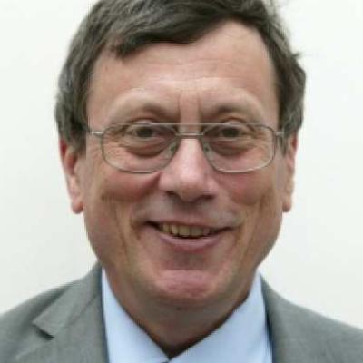 Professor Andrew Bush